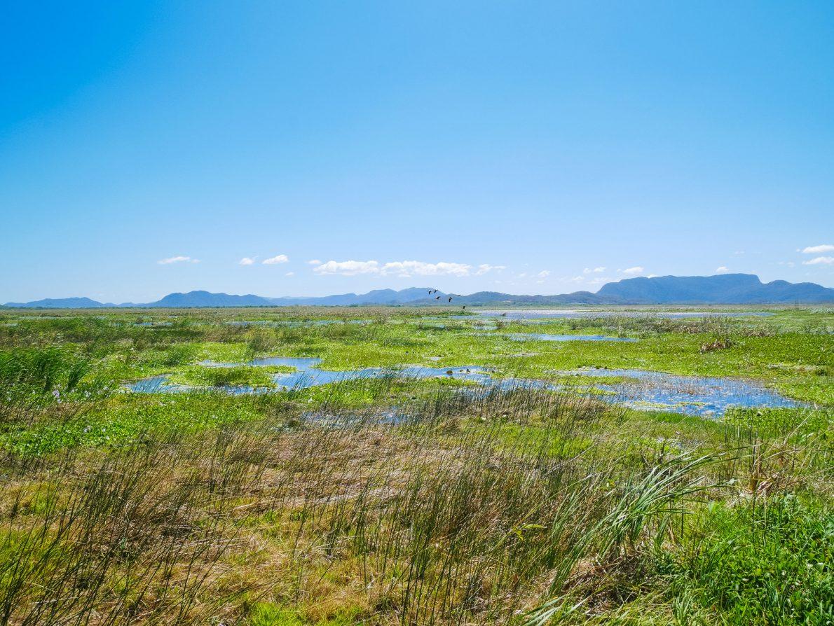 nature reserve guanacaste costa rica