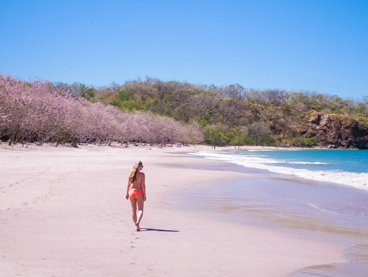 playa zapotillal beach guanacaste costa rica