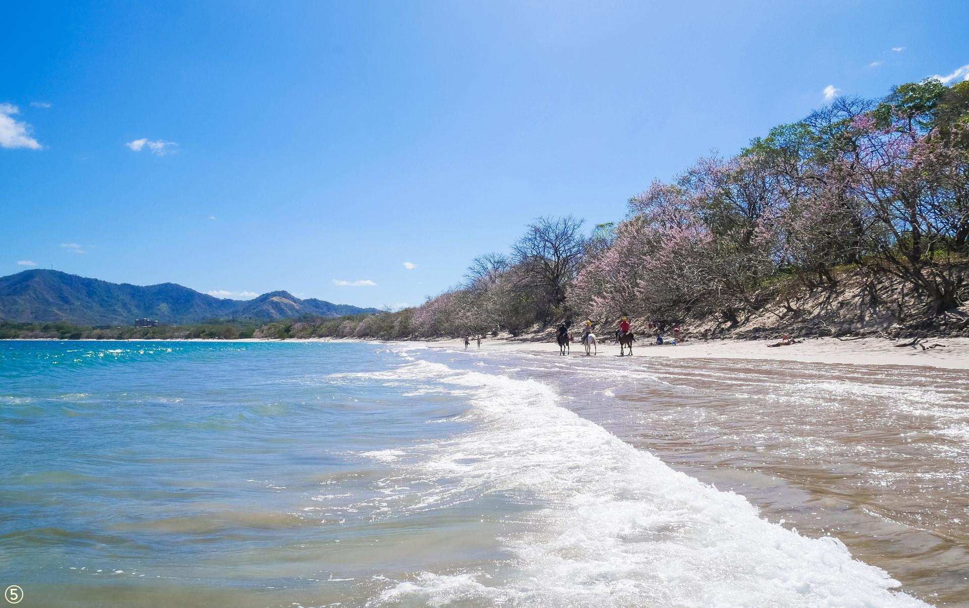 playa conchal beach guanacaste costa rica