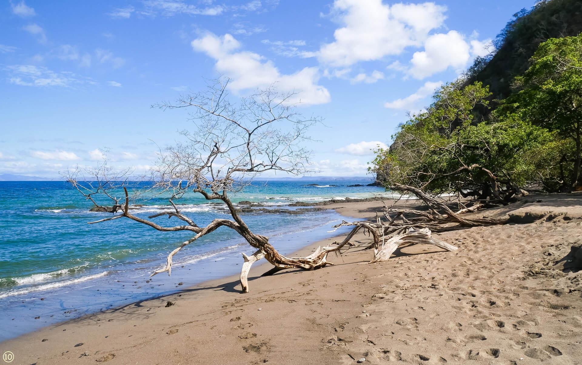 matapalo beach guanacaste costa rica