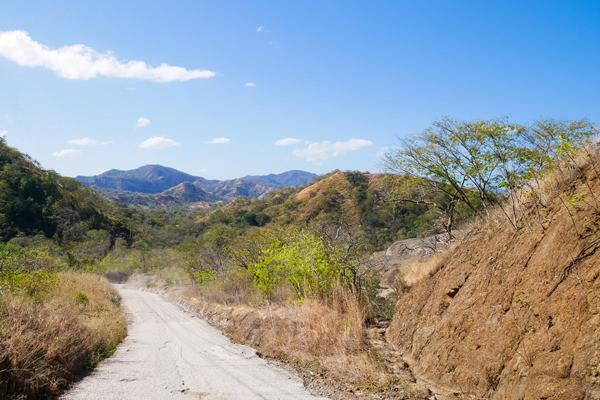 djungle road guanacaste costa rica