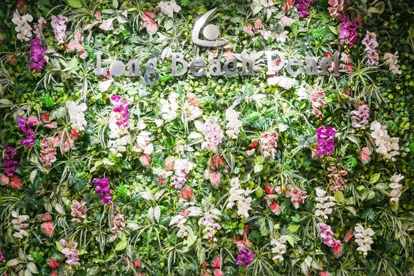 flower wall Dương Đông duong dong phú quốc phu quoc vietnam
