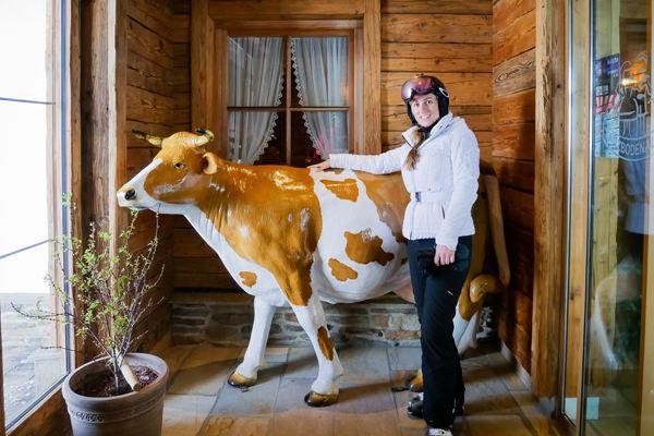 me-cow-ellmau